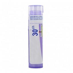 Boiron Acidum Nitricum Grânulo 30CH - 1 tubo - comprar Boiron Acidum Nitricum Grânulo 30CH - 1 tubo online - Farmácia Barreir...