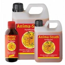 Anima Strath Elixir - 250 mL - comprar Anima Strath Elixir - 250 mL online - Farmácia Barreiros - farmácia de serviço