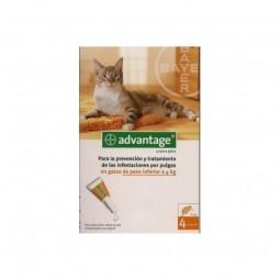 Advantage 40 solução para unção punctiforme para gatos com menos de 4 kg de peso - 4 pipetas - comprar Advantage 40 solução p...