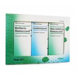 Programa Completo de Desintoxicação - 3 x 30 mL - comprar Programa Completo de Desintoxicação - 3 x 30 mL online - Farmácia B...