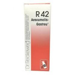 Dr. Reckeweg R42 Gotas - 50ml - comprar Dr. Reckeweg R42 Gotas - 50ml online - Farmácia Barreiros - farmácia de serviço