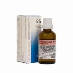 Dr. Reckeweg R5 Gotas - 50ml - comprar Dr. Reckeweg R5 Gotas - 50ml online - Farmácia Barreiros - farmácia de serviço