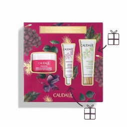 Caudalie Coffret Vinosource Creme SOS - 50mL + 10mL + 15mL - comprar Caudalie Coffret Vinosource Creme SOS - 50mL + 10mL + 15...