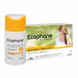 Ecophane Biorga Suplemento Alimentar Anti-Queda com Oferta Ecophane Biorga Champô - 60 comprimidos + 100 mL - comprar Ecophan...