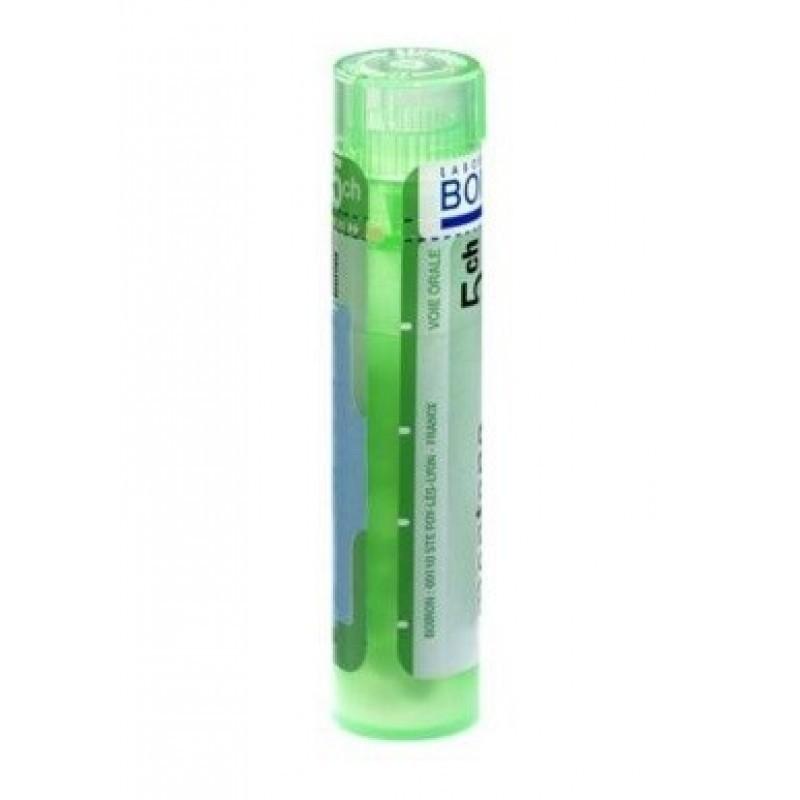 Boiron Calcarea Fluorica Grânulo 5CH - 1 tubo - comprar Boiron Calcarea Fluorica Grânulo 5CH - 1 tubo online - Farmácia Barre...